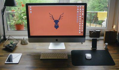 Praca, biuro w domu — jak urządzić